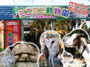 沖縄 観光 スポット
